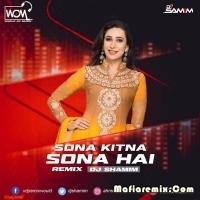 Sona Kitna Sona Hai - Remix - DJ Shamim