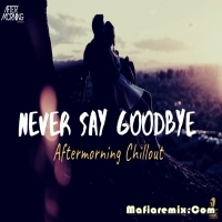 Never Say Goodbye - Aftermorning Chillout Mashup