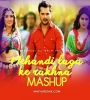 Bhojpuri Single Mashup Remix Mp3 Songs