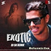 Exotic - Remix - DJ SK