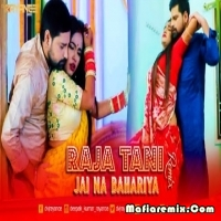 Raja Tani Jai Na Bahariya - Dance Remix - Dvj Rayance