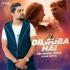 Ek Dilruba Hai - Club Remix - VDJ Rahul Delhi