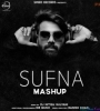 The Sufna - Punjabi Mashup - DJ Nitish Gulyani