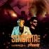 Senorita Remix - DJ Harsh Mahant x DJ Paggy
