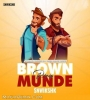 Brown Munde (Remix) - Snwikshk