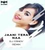 Jaani Tera Naa (Remix) - DJ Candy