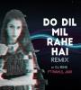 Do Dil Mil Rahe Hai (Remix) - DJ Rink
