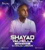 Shayad Vs Valhella (Dubstep Mashup) - DJ Dalal London