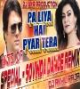 Pa Liya Hai Pyar Tera MIX BY DJ AKHIL RAJA ELECTRO MIX